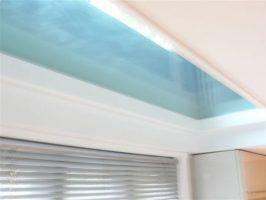Kitchen Ceiling Panel